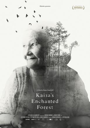 Kaisa's Enchanted Forest